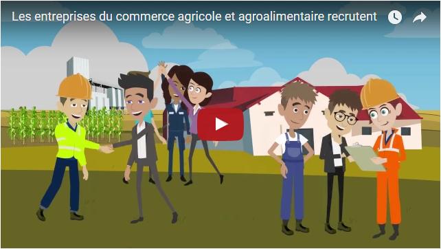 Les entreprises du commerce agricole et agroalimentaire recrutent